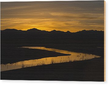 Golden Wetland Sunset Wood Print by Beverly Parks