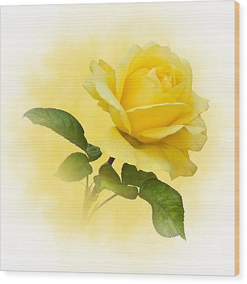 Golden Yellow Rose Wood Print by Jane McIlroy