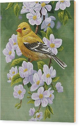 Goldfinch Blossoms Greeting Card 2 Wood Print by Crista Forest