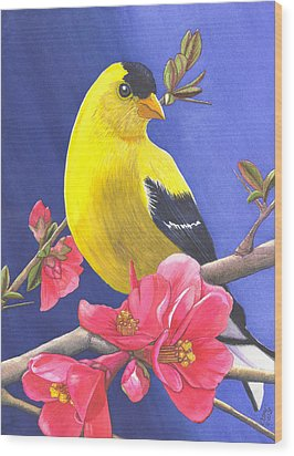 Goldfinch Wood Print by Catherine G McElroy