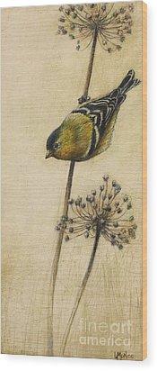 Goldfinch Wood Print by Lori  McNee