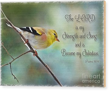Goldfinch With Rosy Shoulder - Digital Paint And Verse Wood Print by Debbie Portwood