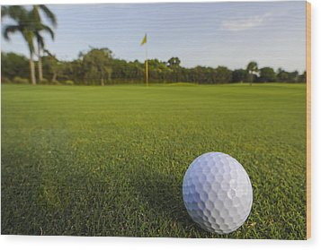 Golf Ball On Golf Course Wood Print by M Cohen