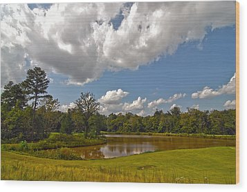 Wood Print featuring the photograph Golf Course Landscape by Alex Grichenko