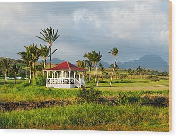 Wood Print featuring the photograph Golf Course On Poipu Shores Kauai by Photography  By Sai