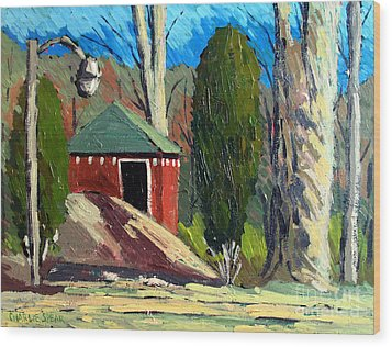 Golf Course Shed Series No.14 Wood Print by Charlie Spear