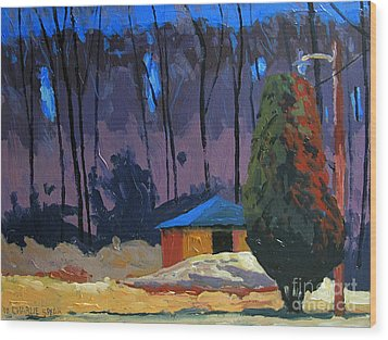 Golf Course Shed Series No.2 Wood Print by Charlie Spear