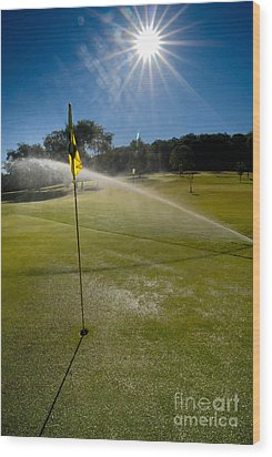 Golf Course Sprinkler On Sunny Day Wood Print by Amy Cicconi
