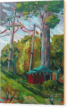 Golf Shed Series No 15 A Synthesis Wood Print by Charlie Spear