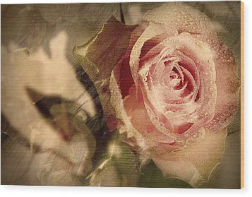Gone With The Wind Romantic Rose Close-up Wood Print