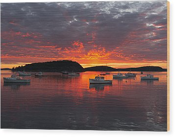 Good Morning Acadia Wood Print by Bernard Chen