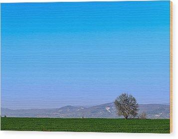 Good Morning  Beautiful World  Wood Print by Sotiris Filippou
