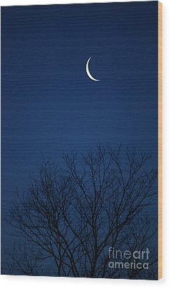 Wood Print featuring the photograph Good Morning Moon by Jay Nodianos