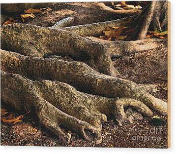 Good Roots Wood Print by Claudette Bujold-Poirier