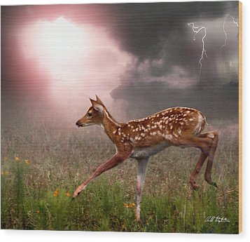 Goodbye Bambi Wood Print by Bill Stephens