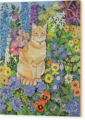 Gordon S Cat Wood Print