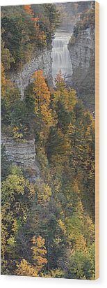 Gorge In Autumn Light Wood Print