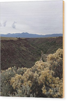 Gorge In Taos Wood Print by Polly Anna