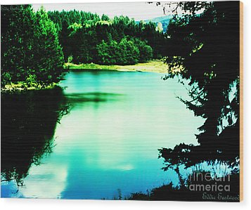 Wood Print featuring the photograph Gorge Waterway Victoria British Columbia by Eddie Eastwood