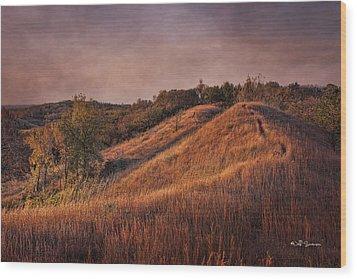Gorgeous Daybreak Wood Print by Jeff Swanson