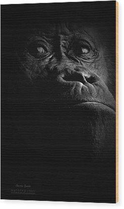 Gorilla Wood Print by Christine Sponchia