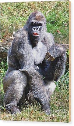 Gorilla Wood Print by Kathleen K Parker