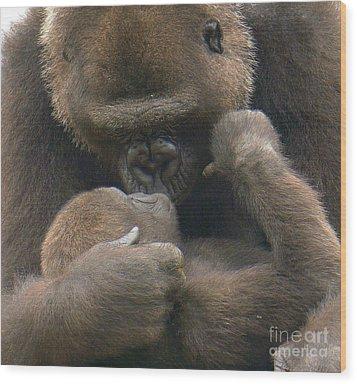 Gorilla Kiss Wood Print