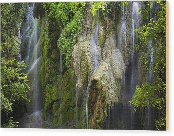 Gorman Falls Wood Print by Mark Weaver