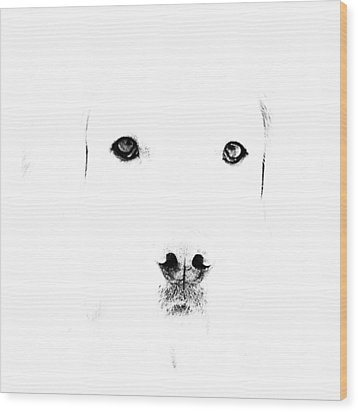 Dog Face Wood Print