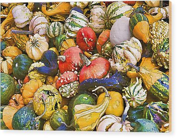 Gourds And Pumpkins At The Farmers Market Wood Print