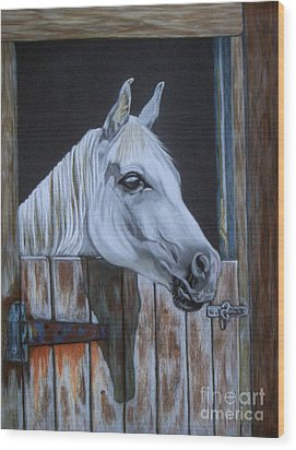 Grace At The Stable Door Wood Print by Yvonne Johnstone