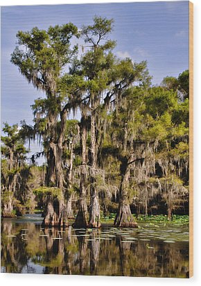 Wood Print featuring the photograph Grace Of Caddo by Lana Trussell