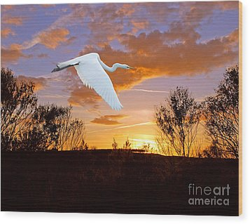 Graceful Fly By Wood Print by Adele Moscaritolo