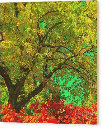 Wood Print featuring the photograph Graceful Locust by Ann Johndro-Collins