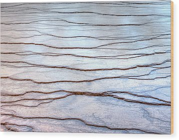 Gradations Wood Print by David Andersen