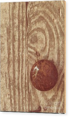 Grains Of Welcome Wood Print by Michael Hoard