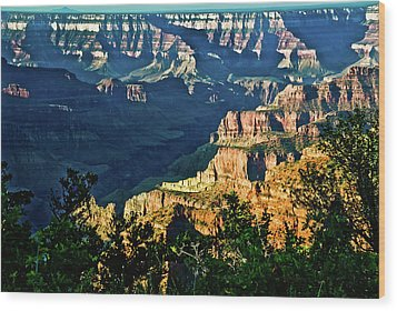 Wood Print featuring the photograph Grand Canyon  Golden Hour On Angel Point by Bob and Nadine Johnston