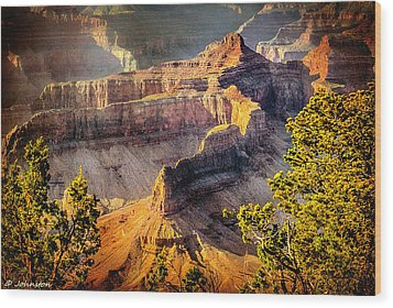 Grand Canyon National Park Wood Print by Bob and Nadine Johnston