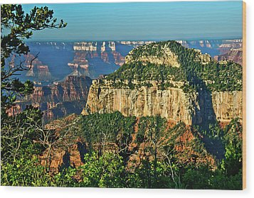 Wood Print featuring the photograph Grand Canyon Peak Angel Point by Bob and Nadine Johnston