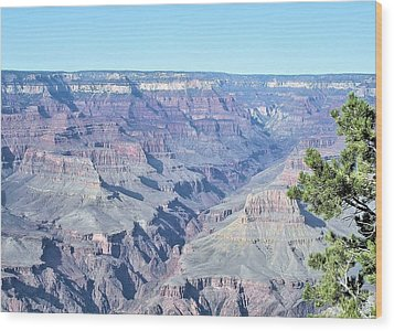 Grand Canyon South Wood Print by David Rizzo