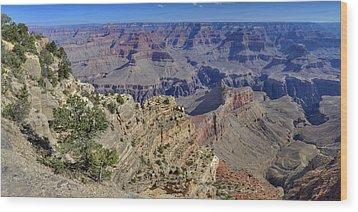 Grand Canyon South Rim Wood Print by Patrick Jacquet