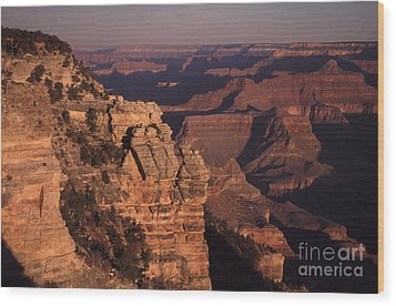 Wood Print featuring the photograph Grand Canyon Sunrise by Liz Leyden