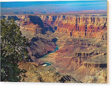 Grand Canyon Sunset Wood Print by Robert Bales