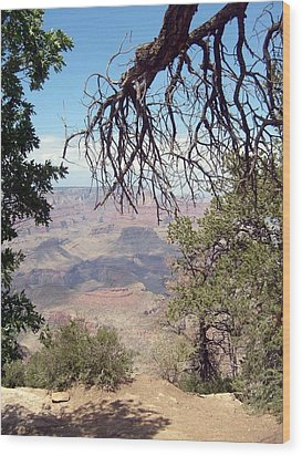 Grand Canyon View 1 Wood Print