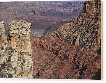 Grand Canyon View Wood Print by Aidan Moran