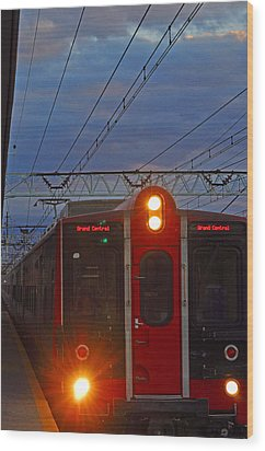 Grand Central Line Wood Print by Peter  McIntosh