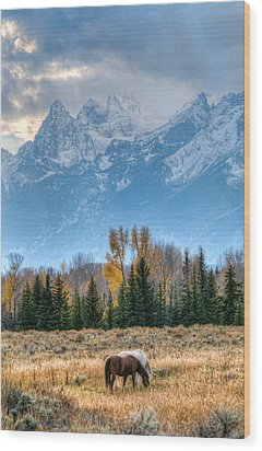 Grand Landscape  Wood Print by Kelly Marquardt