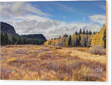 Grand Mesa Colors Wood Print by Bob Hislop
