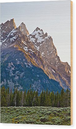 Grand Teton From Jenny Lake Wood Print by Adam Pender