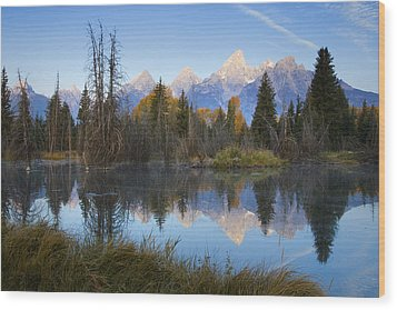 Grand Teton Morning Reflection Wood Print by Sonya Lang